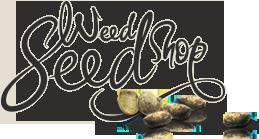 Купить семена конопли. Заказать семена марихуаны в оригинальных упаковках по низким ценам в Украине