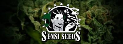 Купить семена марихуаны в Киеве